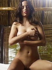 Muriel Tropical Incredible